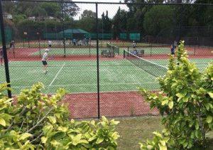 Social-tennis-chatswood-Sunday
